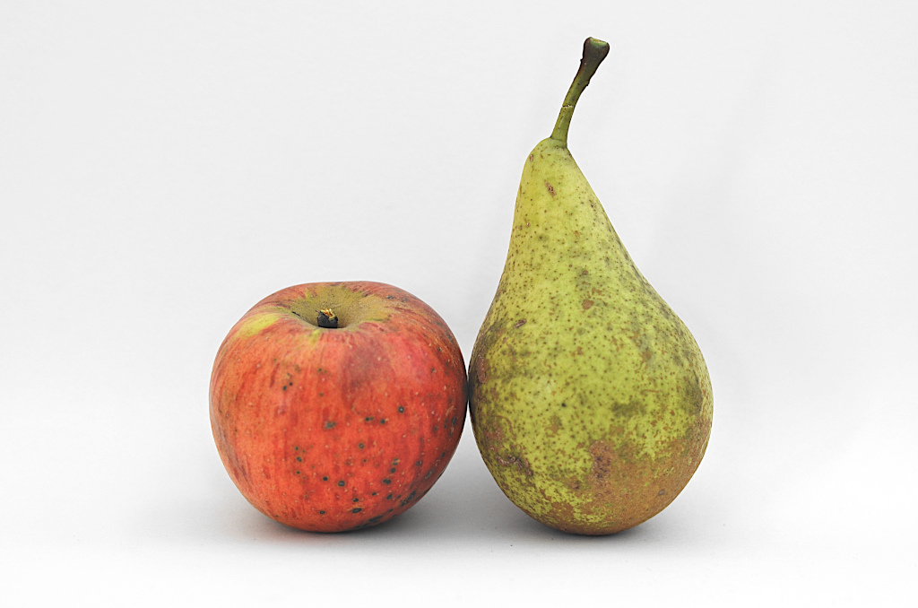 Apfel und Birne als Symbol für Paar