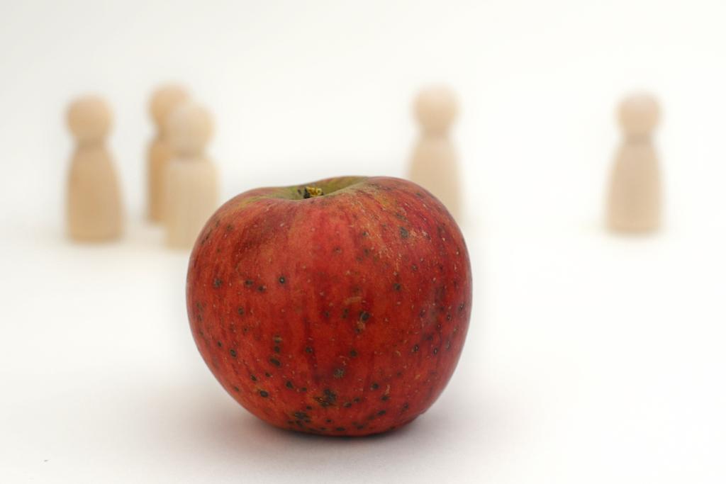 Bild eines Apfels mit kleinen Holzfiguren als Symbol für Psychotherapie